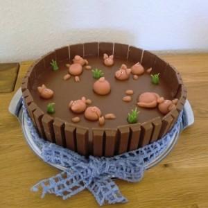 Wilde Sauerei Mousse Au Chocolat Torte Als Schlammteich Mit
